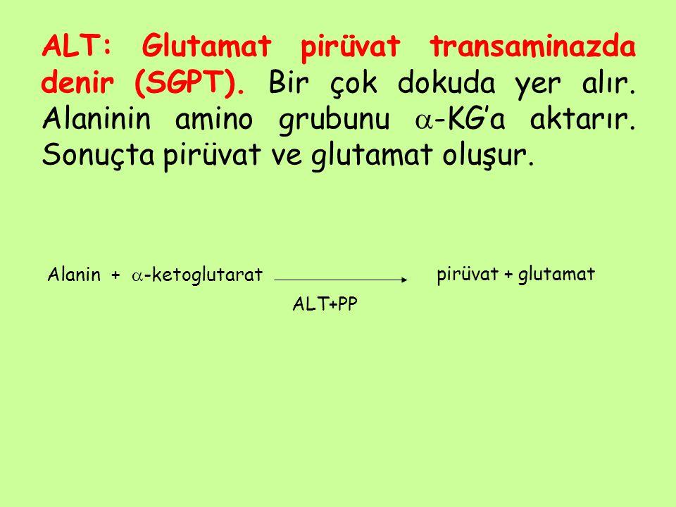 ALT: Glutamat pirüvat transaminazda denir (SGPT). Bir çok dokuda yer alır. Alaninin amino grubunu  -KG'a aktarır. Sonuçta pirüvat ve glutamat oluşur.