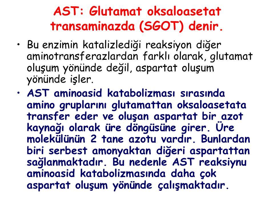 AST: Glutamat oksaloasetat transaminazda (SGOT) denir. Bu enzimin katalizlediği reaksiyon diğer aminotransferazlardan farklı olarak, glutamat oluşum y