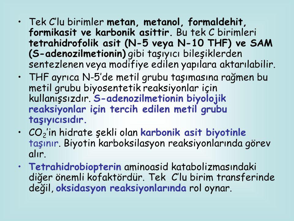 Tek C'lu birimler metan, metanol, formaldehit, formikasit ve karbonik asittir. Bu tek C birimleri tetrahidrofolik asit (N-5 veya N-10 THF) ve SAM (S-a