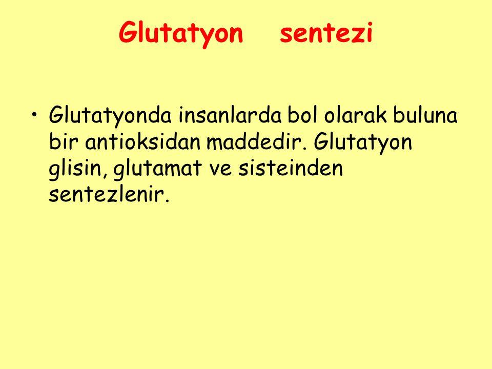 Glutatyon sentezi Glutatyonda insanlarda bol olarak buluna bir antioksidan maddedir. Glutatyon glisin, glutamat ve sisteinden sentezlenir.