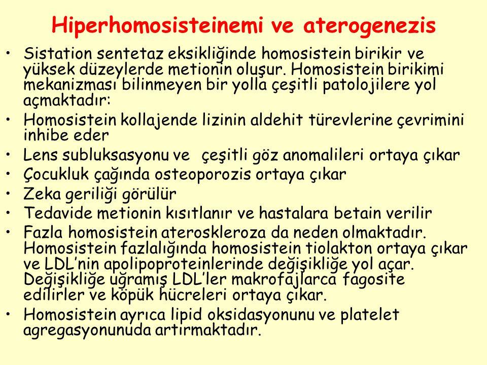 Hiperhomosisteinemi ve aterogenezis Sistation sentetaz eksikliğinde homosistein birikir ve yüksek düzeylerde metionin oluşur. Homosistein birikimi mek