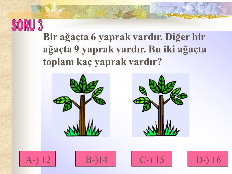 Bir ağaçta 6 yaprak vardır. Diğer bir ağaçta 9 yaprak vardır. Bu iki ağaçta toplam kaç yaprak vardır? A-) 12B-)14D-) 16C-) 15