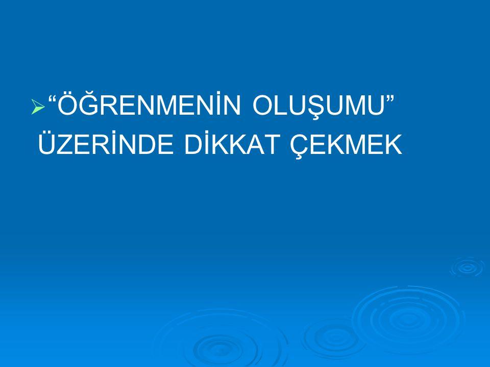 """  """"ÖĞRENMENİN OLUŞUMU"""" ÜZERİNDE DİKKAT ÇEKMEK"""