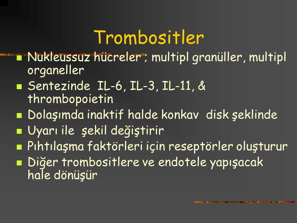 Trombositler Nukleussuz hücreler ; multipl granüller, multipl organeller Sentezinde IL-6, IL-3, IL-11, & thrombopoietin Dolaşımda inaktif halde konkav