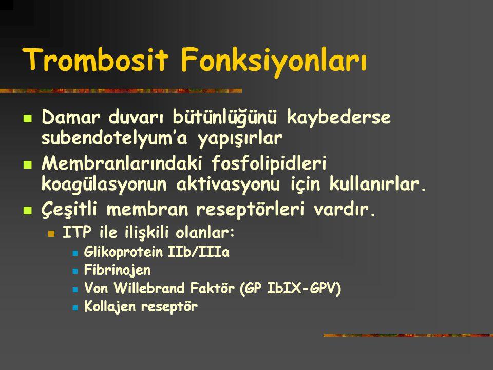 Trombosit Fonksiyonları Damar duvarı bütünlüğünü kaybederse subendotelyum'a yapışırlar Membranlarındaki fosfolipidleri koagülasyonun aktivasyonu için