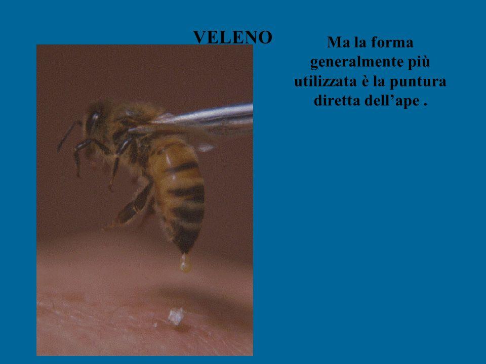 VELENO Ma la forma generalmente più utilizzata è la puntura diretta dell'ape.
