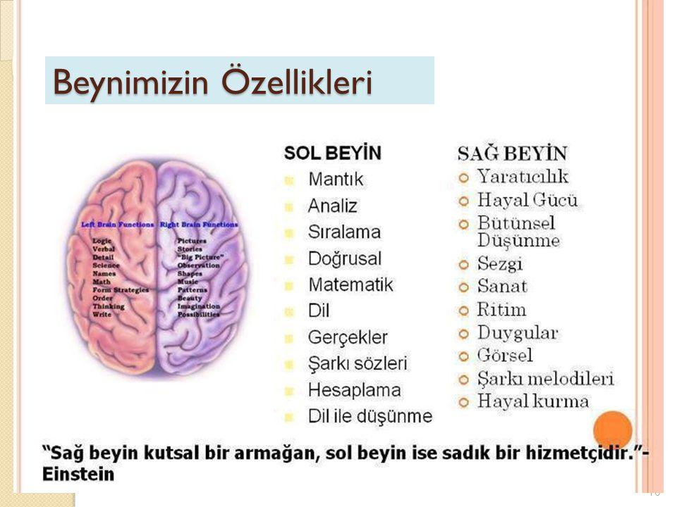 10 Beynimizin Özellikleri