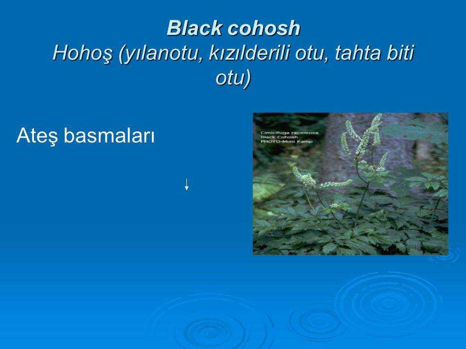 Black cohosh Hohoş (yılanotu, kızılderili otu, tahta biti otu) Ateş basmaları