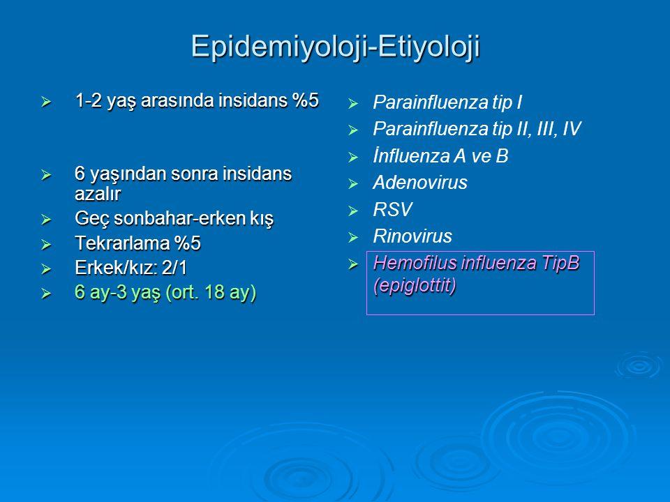 Epidemiyoloji-Etiyoloji  1-2 yaş arasında insidans %5  6 yaşından sonra insidans azalır  Geç sonbahar-erken kış  Tekrarlama %5  Erkek/kız: 2/1  6 ay-3 yaş (ort.