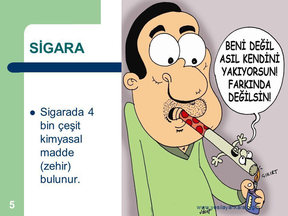 NORMAL KARACİĞER SİROZLU KARACİĞER 16 www.yesilayankara.org.tr