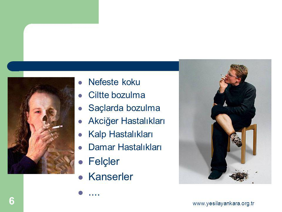 Nefeste koku Ciltte bozulma Saçlarda bozulma Akciğer Hastalıkları Kalp Hastalıkları Damar Hastalıkları Felçler Kanserler.... 6 www.yesilayankara.org.t