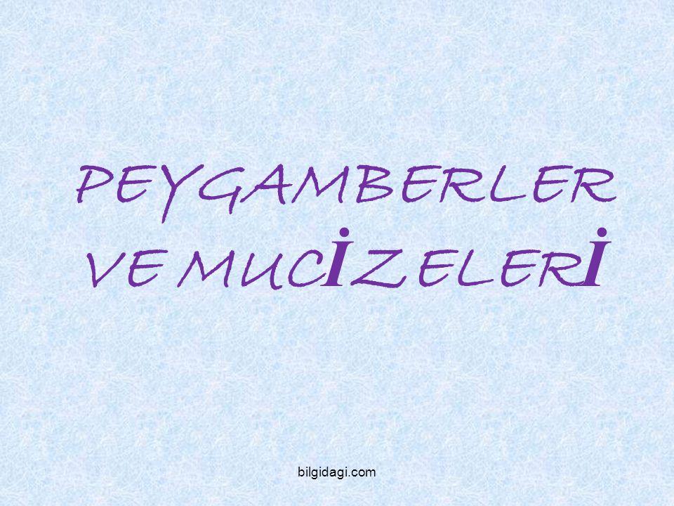 PEYGAMBERLER VE MUC İ ZELER İ bilgidagi.com
