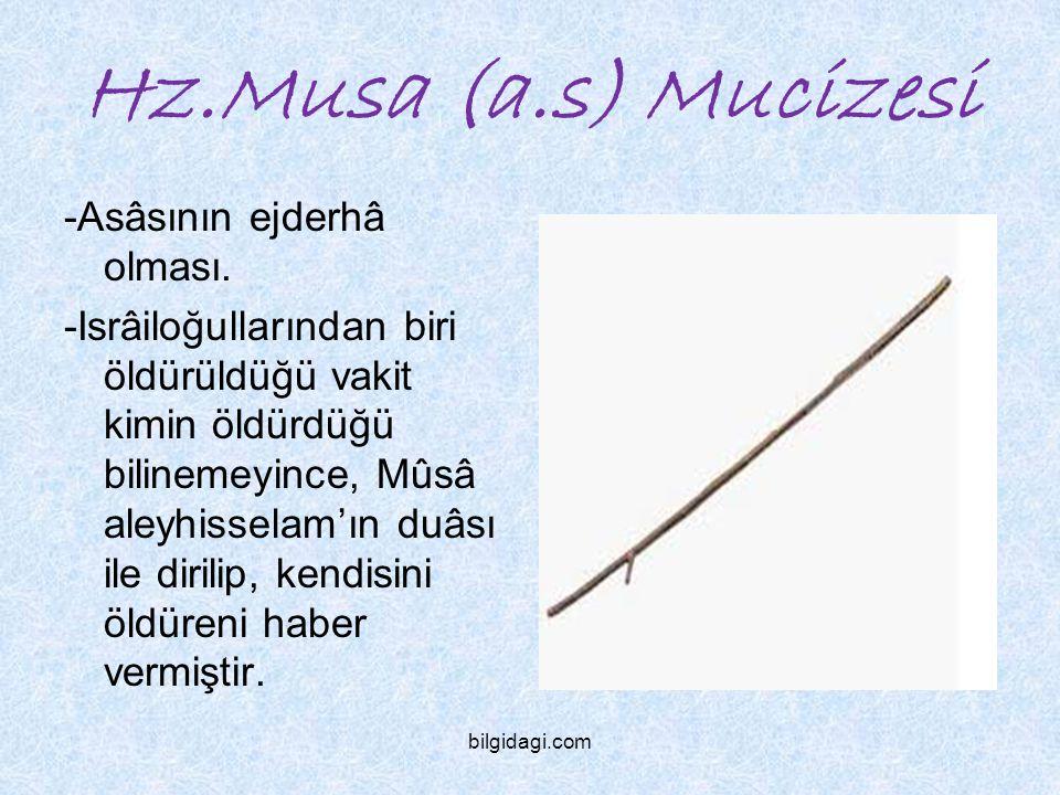 Hz.Musa (a.s) Mucizesi -Asâsının ejderhâ olması. -Isrâiloğullarından biri öldürüldüğü vakit kimin öldürdüğü bilinemeyince, Mûsâ aleyhisselam'ın duâsı