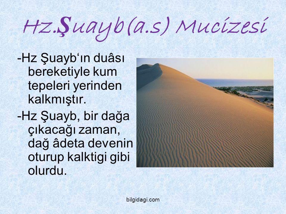 Hz. Ş uayb(a.s) Mucizesi -Hz Şuayb'ın duâsı bereketiyle kum tepeleri yerinden kalkmıştır. -Hz Şuayb, bir dağa çıkacağı zaman, dağ âdeta devenin oturup