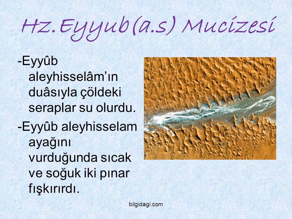 Hz.Ş uayb(a.s) Mucizesi -Hz Şuayb'ın duâsı bereketiyle kum tepeleri yerinden kalkmıştır.