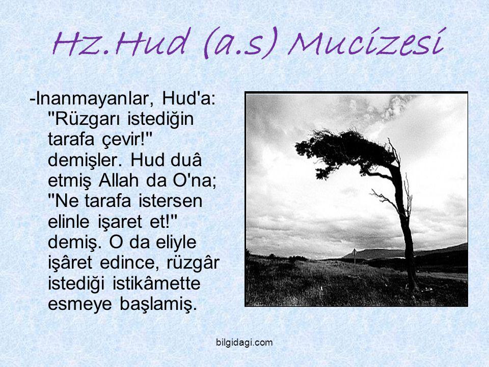 Hz.Hud (a.s) Mucizesi -Inanmayanlar, Hud'a: ''Rüzgarı istediğin tarafa çevir!'' demişler. Hud duâ etmiş Allah da O'na; ''Ne tarafa istersen elinle işa