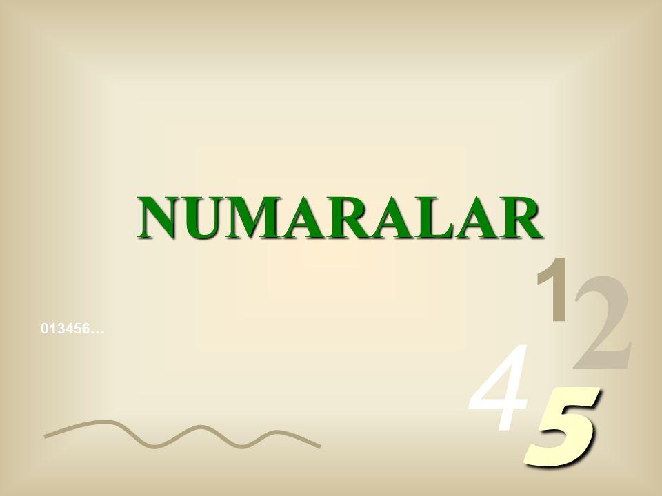 013456… 1 2 4 5 NUMARALAR