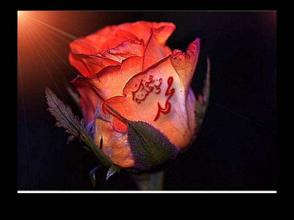 كَافِلُ الْيَتِيمِ لَهُ أوْ لِغَيْرِهِ أنَا وَ هُوَ كَهَاتَيْنِ فيِ الْجَنَّةِ وَأشَارَ بِالسَّبَّابَةِ وَالْوُسْطَى Peygamberimiz işaret parmağı ve orta parmağıyla işaret ederek: Gerek kendisine ve gerekse başkasına ait herhangi bir yetimi görüp gözetmeyi üzerine alan kimse ile ben, cennette işte böyle yanyanayız buyurmuştur.