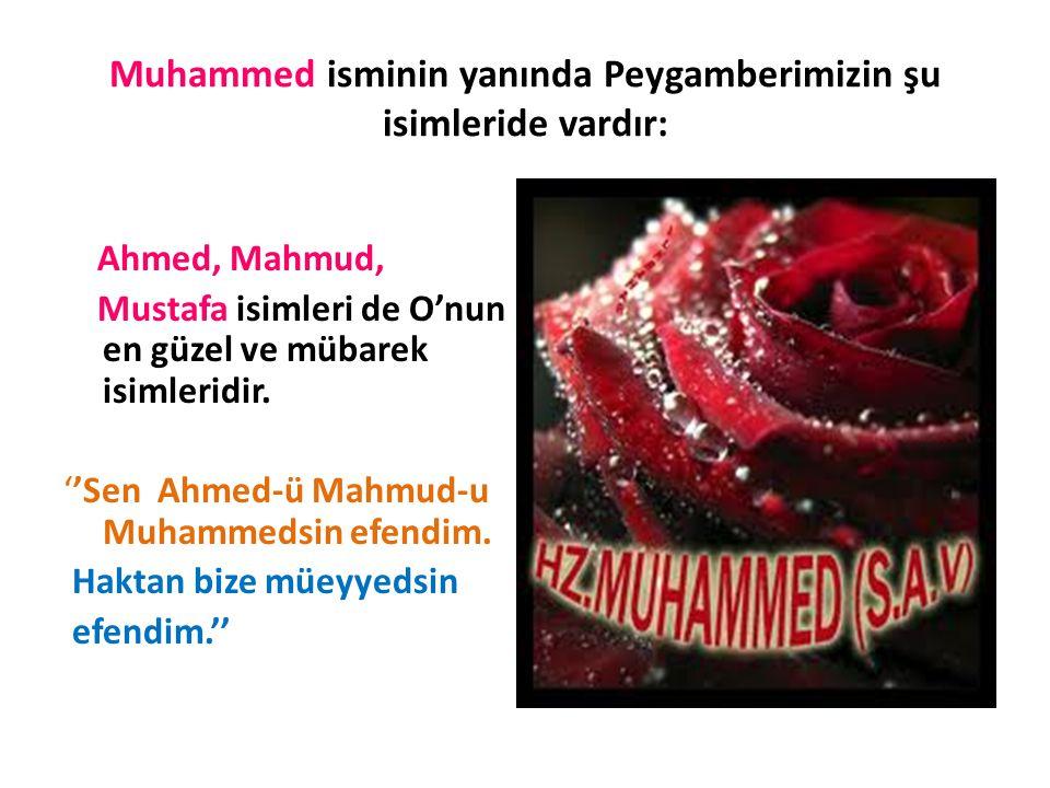 Muhammed isminin yanında Peygamberimizin şu isimleride vardır: Ahmed, Mahmud, Mustafa isimleri de O'nun en güzel ve mübarek isimleridir.