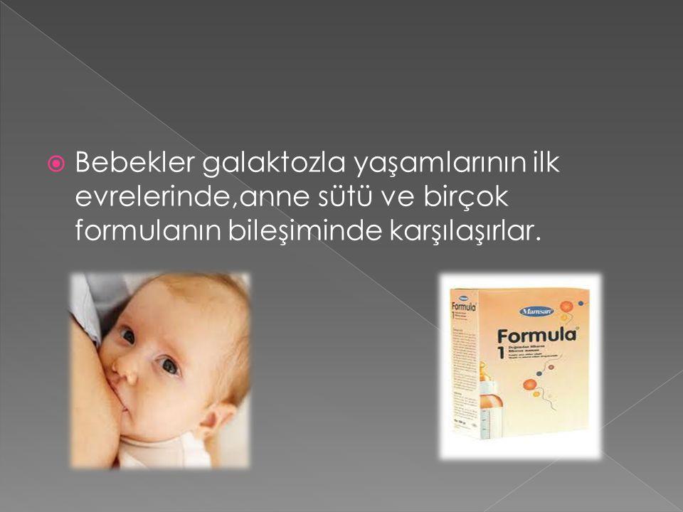 Bebekler galaktozla yaşamlarının ilk evrelerinde,anne sütü ve birçok formulanın bileşiminde karşılaşırlar.