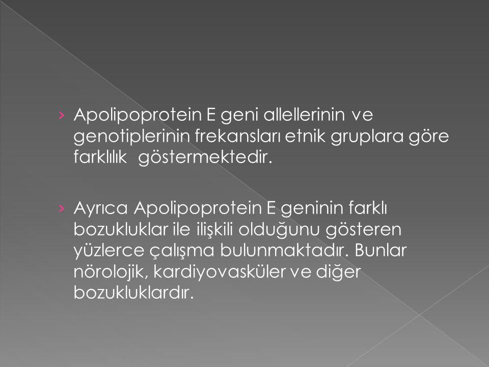 › Apolipoprotein E geni allellerinin ve genotiplerinin frekansları etnik gruplara göre farklılık göstermektedir. › Ayrıca Apolipoprotein E geninin far