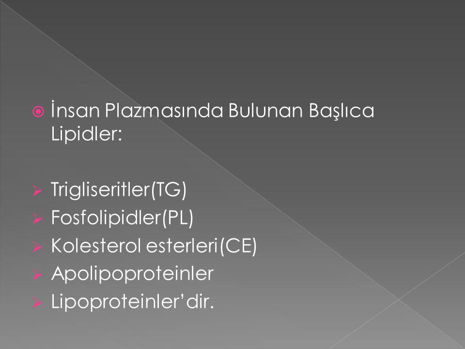  İnsan Plazmasında Bulunan Başlıca Lipidler:  Trigliseritler(TG)  Fosfolipidler(PL)  Kolesterol esterleri(CE)  Apolipoproteinler  Lipoproteinler'dir.