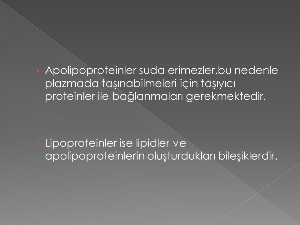 › Apolipoproteinler suda erimezler,bu nedenle plazmada taşınabilmeleri için taşıyıcı proteinler ile bağlanmaları gerekmektedir. › Lipoproteinler ise l