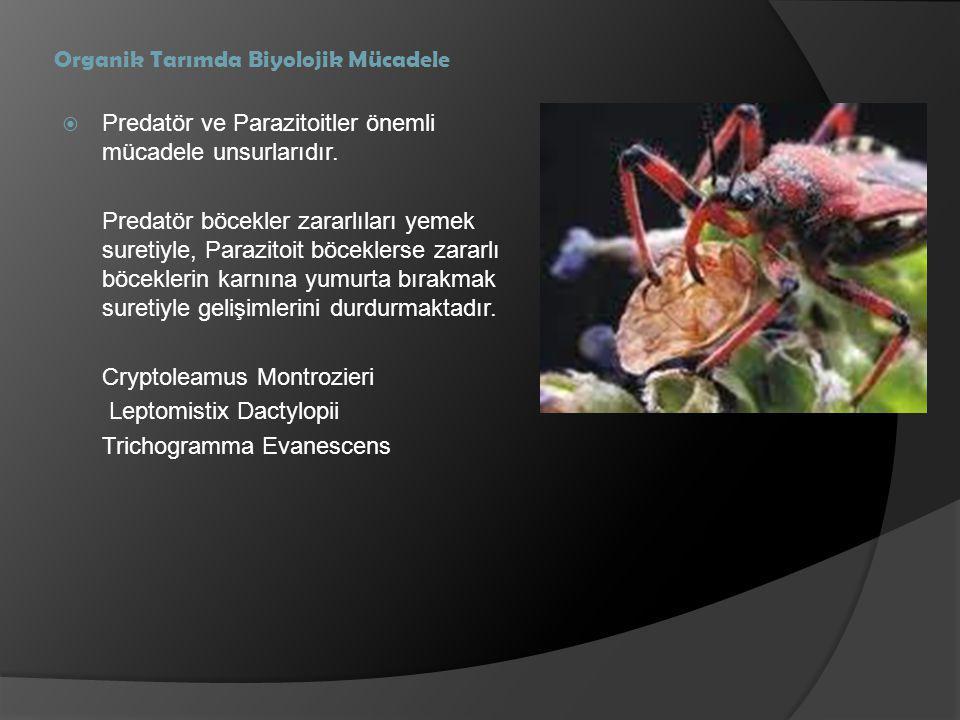 Organik Tarımda Biyolojik Mücadele  Predatör ve Parazitoitler önemli mücadele unsurlarıdır. Predatör böcekler zararlıları yemek suretiyle, Parazitoit