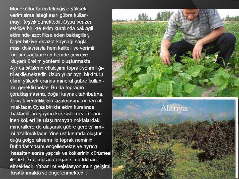 Monokültür tarım tekniğiyle yüksek verim alma isteği aşırı gübre kullan- mayı teşvik etmektedir. Oysa benzer şekilde birlikte ekim kuralında baklagil