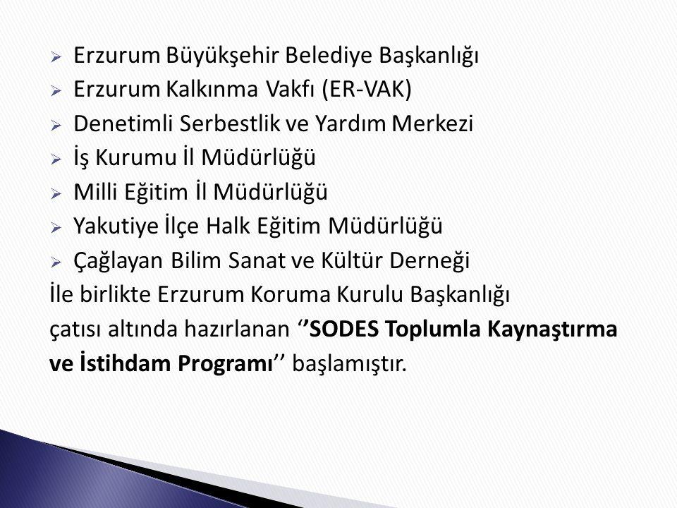  Erzurum Büyükşehir Belediye Başkanlığı  Erzurum Kalkınma Vakfı (ER-VAK)  Denetimli Serbestlik ve Yardım Merkezi  İş Kurumu İl Müdürlüğü  Milli Eğitim İl Müdürlüğü  Yakutiye İlçe Halk Eğitim Müdürlüğü  Çağlayan Bilim Sanat ve Kültür Derneği İle birlikte Erzurum Koruma Kurulu Başkanlığı çatısı altında hazırlanan ''SODES Toplumla Kaynaştırma ve İstihdam Programı'' başlamıştır.