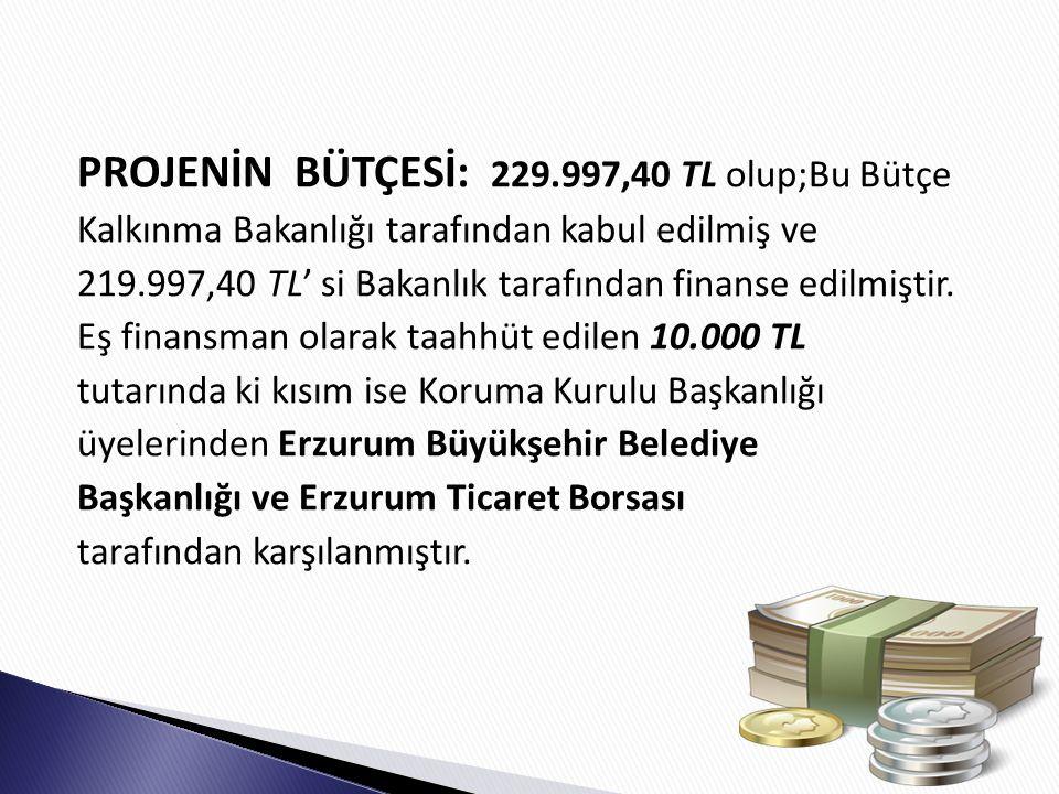 PROJENİN BÜTÇESİ: 229.997,40 TL olup;Bu Bütçe Kalkınma Bakanlığı tarafından kabul edilmiş ve 219.997,40 TL' si Bakanlık tarafından finanse edilmiştir.