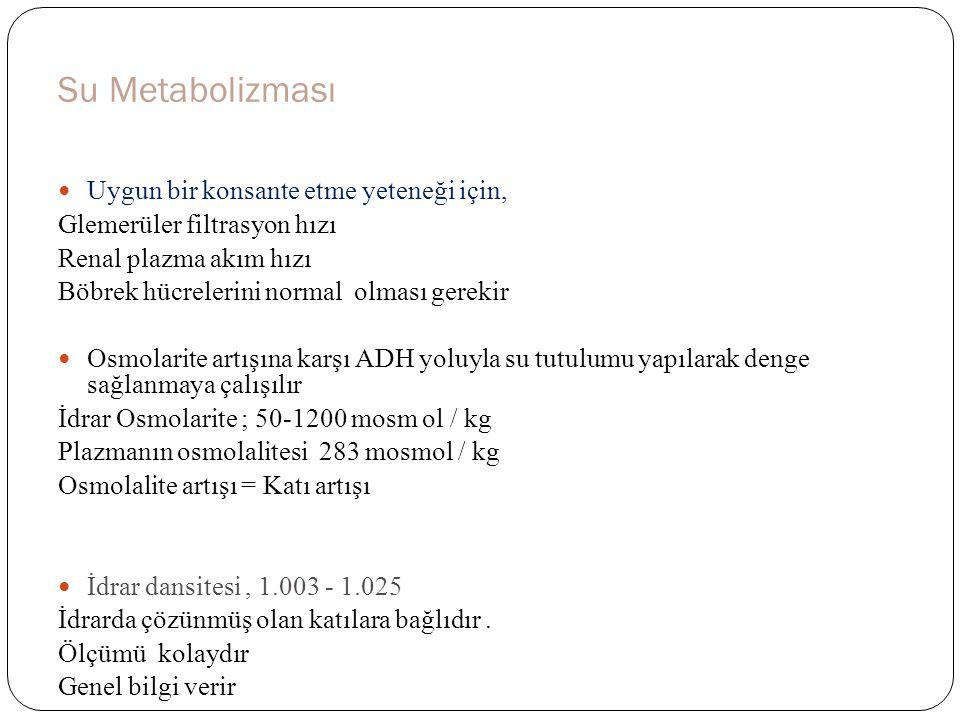 Elektrolit – Asit Baz Dengesi Proximal tübülüs ; Cl, Na ; K, HCO3, Ca, P geri emilimi Distal Tübülüs ; K+, H, sekresyonu, Na, HCO3 tutulumu Henle Kulpu ; Su tutulumu Aldosteron etkisiyle ; Sodyumun geri emilmesine kar ş ılık, (K+ ) ve hidrojen (H +) iyonları idrara verilir Asit ve baz dengesinin sa ğ lanmasında böbrekler, Akci ğ erlerle beraber merkezi role sahiptir