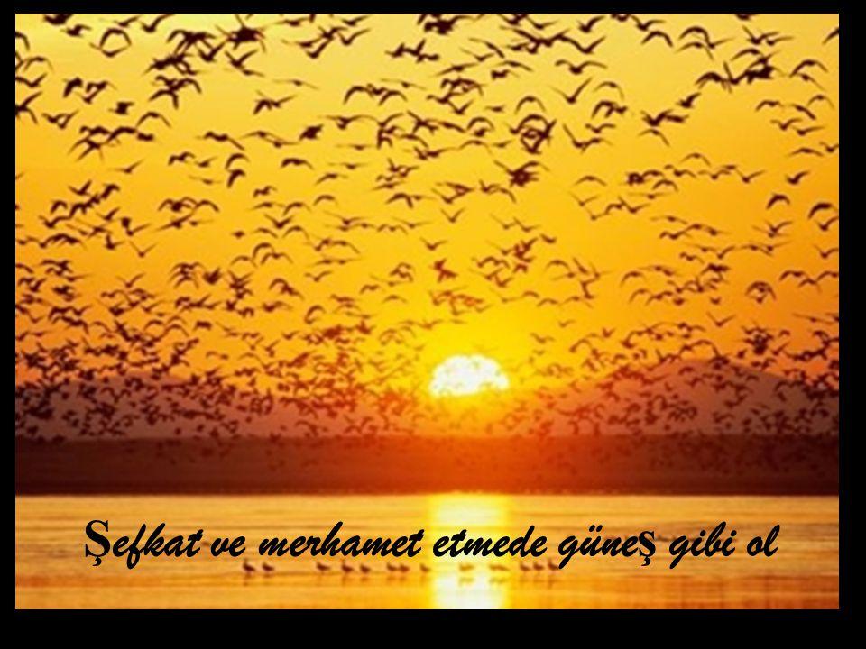 Ş efkat ve merhamet etmede güne ş gibi ol