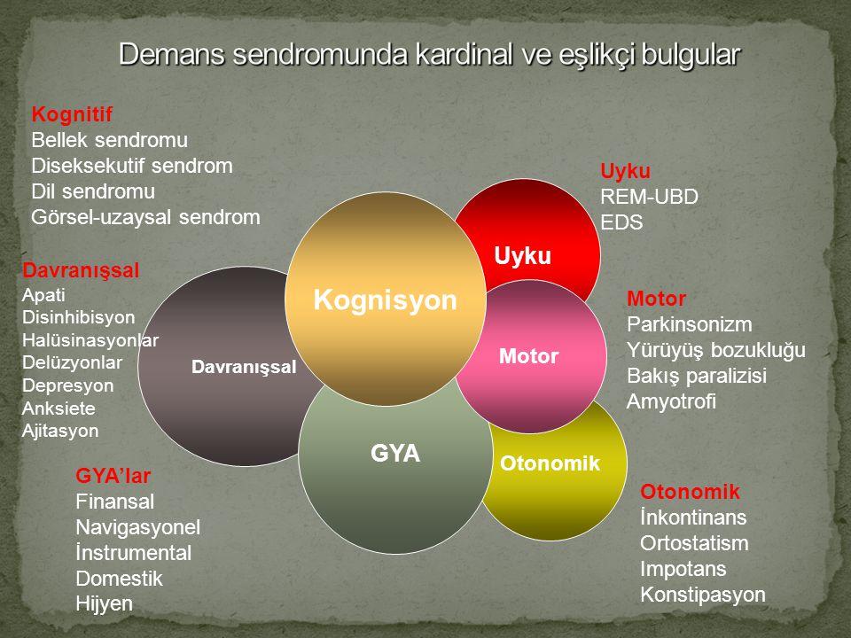 Davranışsal Otonomik GYA Uyku Motor Kognisyon Kognitif Bellek sendromu Diseksekutif sendrom Dil sendromu Görsel-uzaysal sendrom GYA'lar Finansal Navig