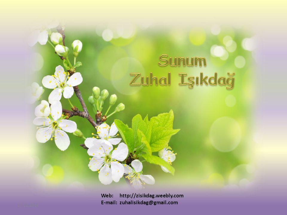 Web: http://zisikdag.weebly.com E-mail: zuhalisikdag@gmail.com 17.12.2014