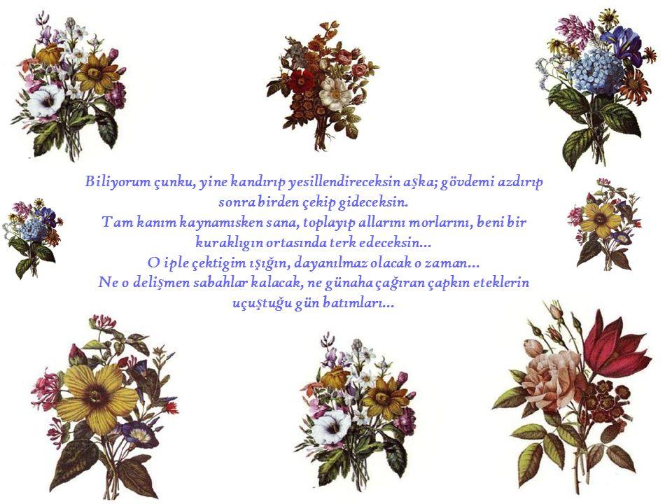 Tembel ku ş ların ş akımaktan bitap, ebruli çiçeklerin kokmaktan...