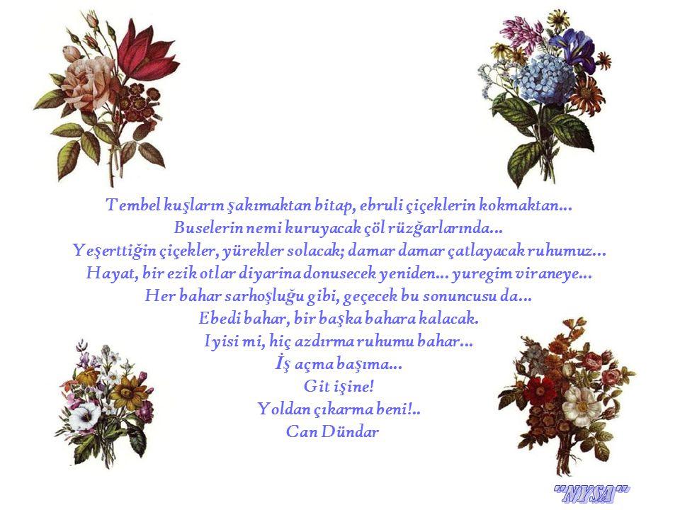 Tembel ku ş ların ş akımaktan bitap, ebruli çiçeklerin kokmaktan... Buselerin nemi kuruyacak çöl rüz ğ arlarında... Ye ş ertti ğ in çiçekler, yürekler