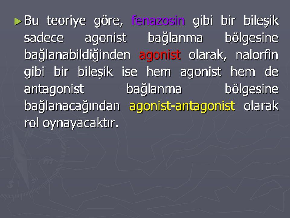 ► Bu teoriye göre, fenazosin gibi bir bileşik sadece agonist bağlanma bölgesine bağlanabildiğinden agonist olarak, nalorfin gibi bir bileşik ise hem a