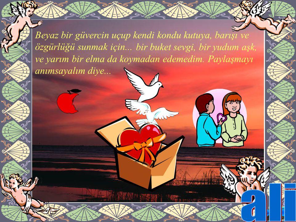 ve yarım bir elma da koymadan edemedim. Paylaşmayı anımsayalım diye... Beyaz bir güvercin uçup kendi kondu kutuya, barışı ve özgürlüğü sunmak için...