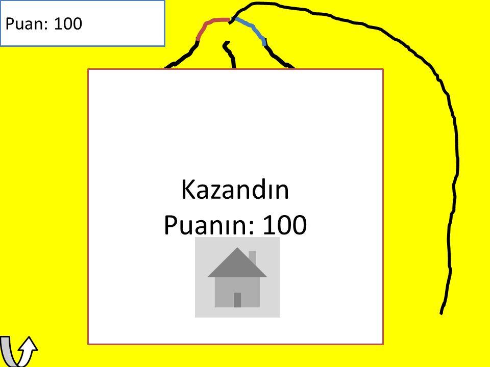 TNT Puan: -20