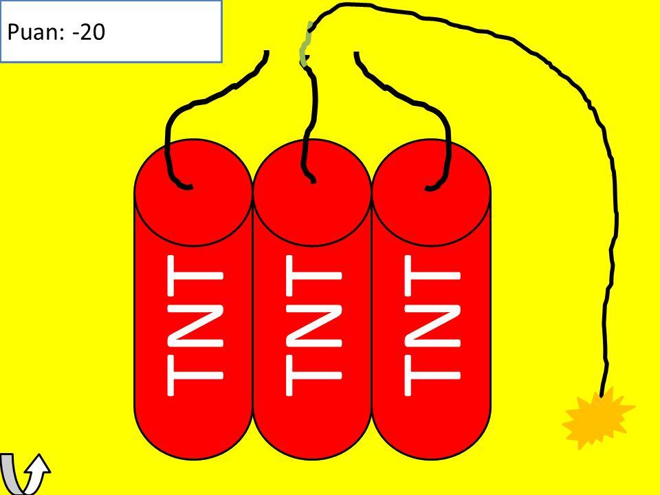 TNT Puan: 80 Kazandın Puanın: 80