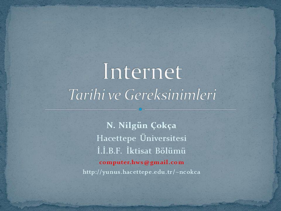 N. Nilgün Çokça Hacettepe Üniversitesi İ.İ.B.F. İktisat Bölümü computer.hws@gmail.com http://yunus.hacettepe.edu.tr/~ncokca