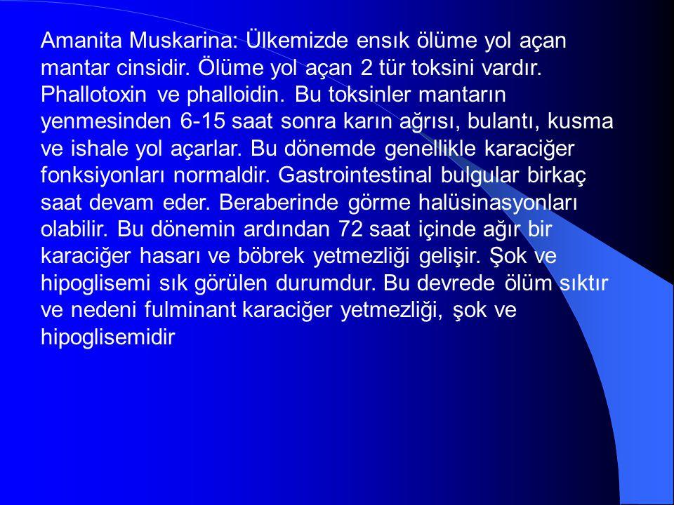 Amanita Muskarina: Ülkemizde ensık ölüme yol açan mantar cinsidir. Ölüme yol açan 2 tür toksini vardır. Phallotoxin ve phalloidin. Bu toksinler mantar