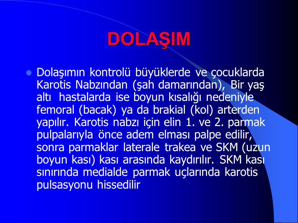 DOLAŞIM Dolaşımın kontrolü büyüklerde ve çocuklarda Karotis Nabzından (şah damarından), Bir yaş altı hastalarda ise boyun kısalığı nedeniyle femoral (