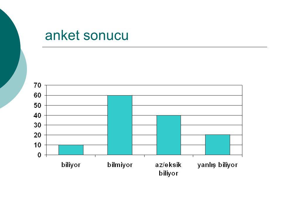 anket sonucu