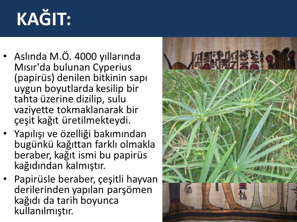 Aslında M.Ö. 4000 yıllarında Mısır'da bulunan Cyperius (papirüs) denilen bitkinin sapı uygun boyutlarda kesilip bir tahta üzerine dizilip, sulu vaziye