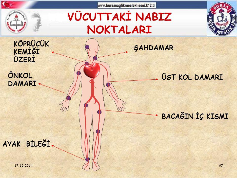 17.12.201466 DOLAŞIM SİSTEMİ NABIZ: Kanın atardamara yaptığı basınçtır.