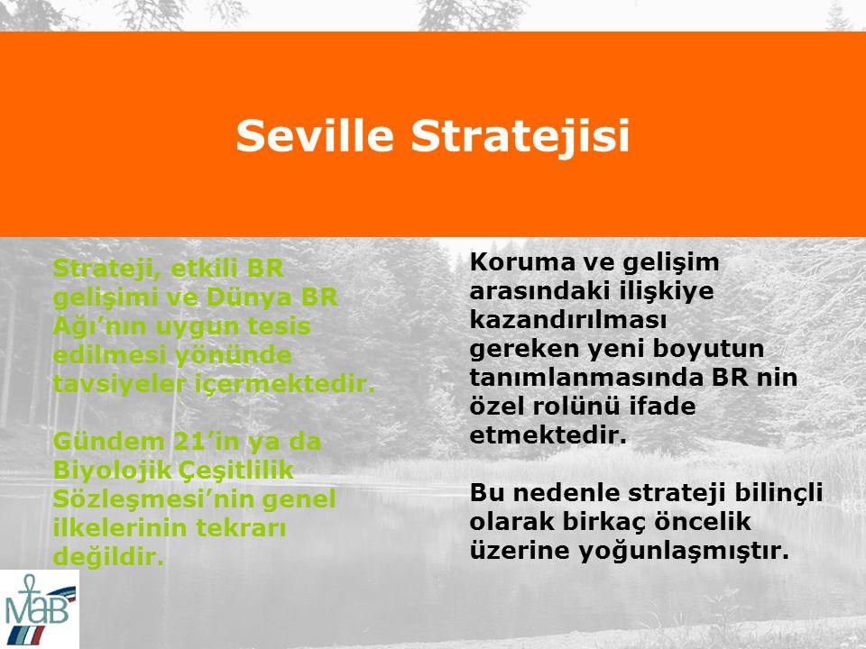 Seville Stratejisi Strateji, etkili BR gelişimi ve Dünya BR Ağı'nın uygun tesis edilmesi yönünde tavsiyeler içermektedir.