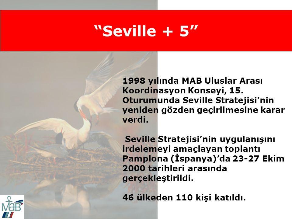 Seville + 5 1998 yılında MAB Uluslar Arası Koordinasyon Konseyi, 15.