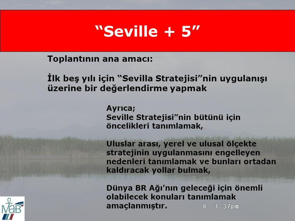 Seville + 5 Toplantının ana amacı: İlk beş yılı için Sevilla Stratejisi nin uygulanışı üzerine bir değerlendirme yapmak Ayrıca; Seville Stratejisi nin bütünü için öncelikleri tanımlamak, Uluslar arası, yerel ve ulusal ölçekte stratejinin uygulanmasını engelleyen nedenleri tanımlamak ve bunları ortadan kaldıracak yollar bulmak, Dünya BR Ağı'nın geleceği için önemli olabilecek konuları tanımlamak amaçlanmıştır.